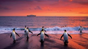 Lindblad_Expeditions_5